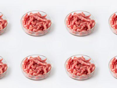 Jak będzie wyglądała przyszłość mięsa?