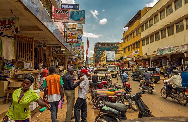 Za dekadę drób z Afryki może pojawić się w Europie